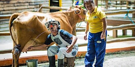 Desconto para Carnaval na Fazendinha Pet Zoo, em Cotia ingressos