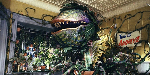 Little Shop of Horrors - an immersive screening - meet Audrey II
