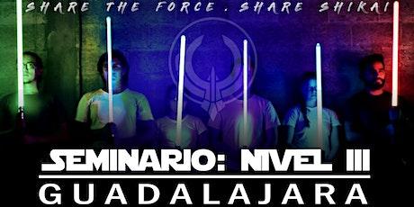 Seminario:Nivel 3 - Guadalajara entradas