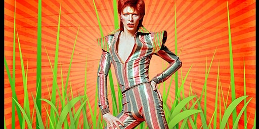 Bowiegrass plays Ziggy Stardust and more!