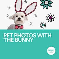 Easter Bunny Pet Photo Night
