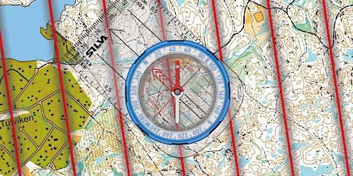 Basic Compass/GPS Navigation