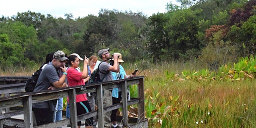 Long Key Nature Center BioBlitz