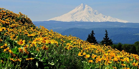 Rowena Plateau Wildflower Walk, OR tickets