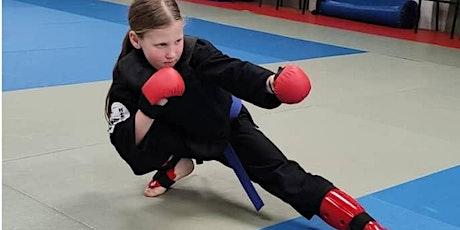 Little Dragons 5 - 7 yrs Martial Arts Beginner classes tickets