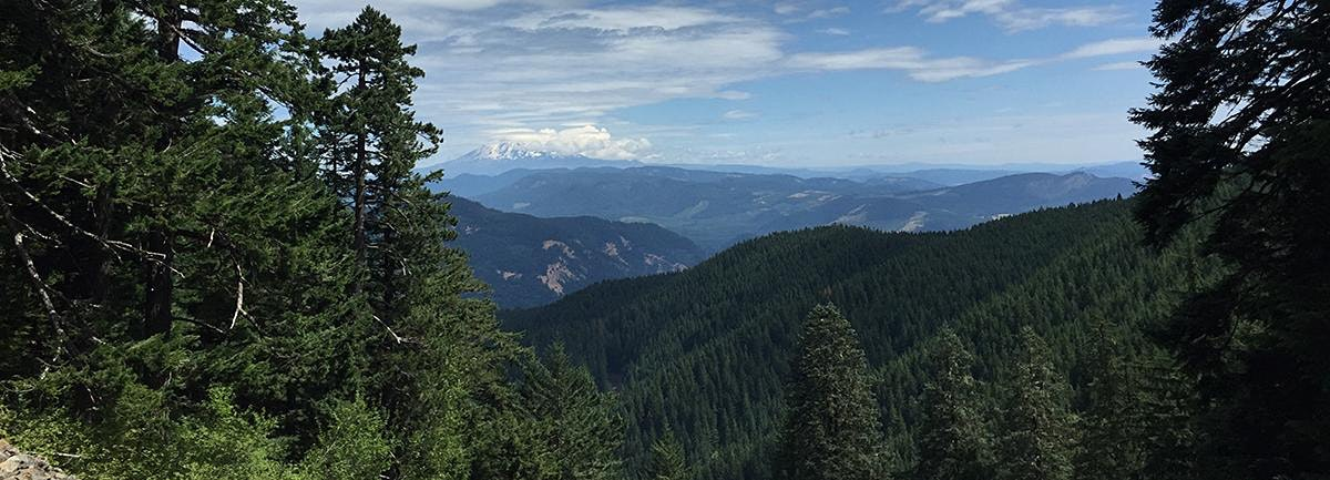 Starvation Ridge to Mount Defiance Loop, OR