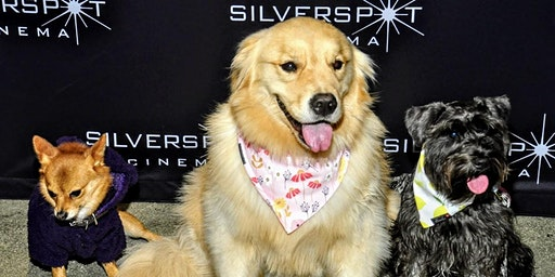 Movie Night with Your Dog on February 25th by Canine Film Festival