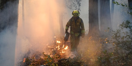 Burning in the Fog: Bay Area Prescribed Fire Council's 2020 Summer Meeting tickets