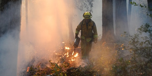 Burning in the Fog: Bay Area Prescribed Fire Council's 2020 Spring Meeting