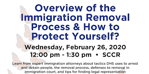 Overview of the Immigration Removal Process & How to Protect Yourself?