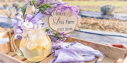 1st Bloom Lavender Festival