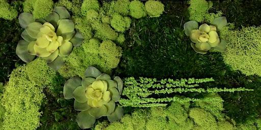 Moss Art Workshop