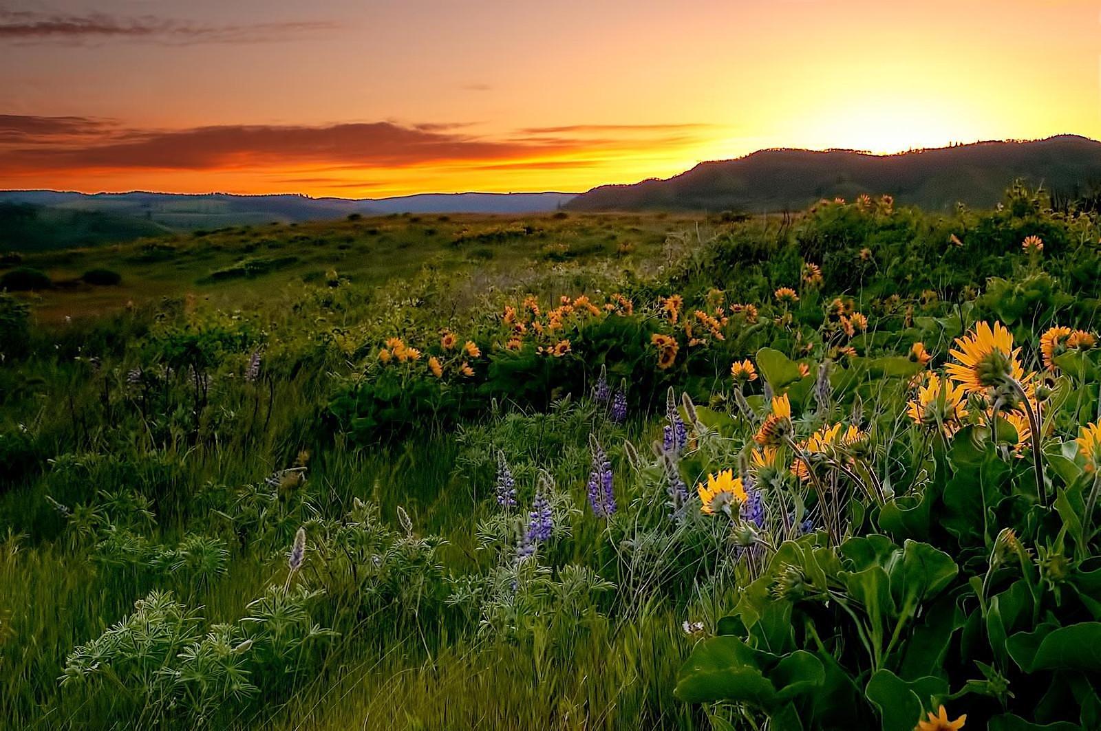 Tom McCall Sunset Hike, OR