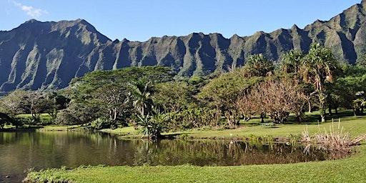 Green Walk - Hoʻomaluhia Botanical Garden (Kāneʻohe, Oʻahu)
