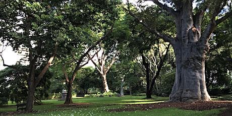 Green Walk - Foster Botanical Garden (Honolulu, Oʻahu) tickets