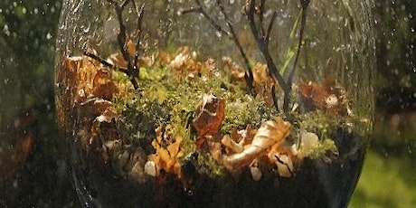Miniature Landscapes @ Longford Library tickets