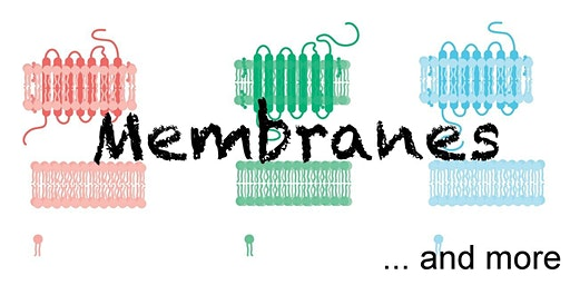 Membranes and More