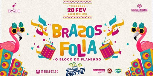 Brazilian Carnaval 2020 - Bloco do Flamingo