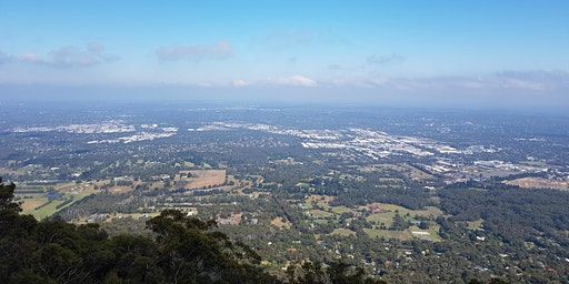Mt Dandenong to Sky High - 18km return hike on the 21st of March, 2020