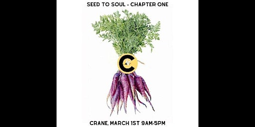 Seed to Soul: A Festival