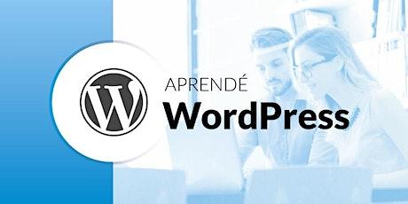 Curso de Wordpress - Como crear paginas web (Cod.503) entradas