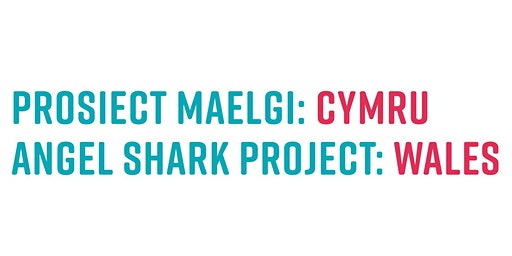 Angel Shark Project: Wales celebration event