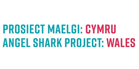 Angel Shark Project: Wales celebration event tickets