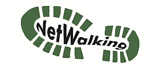 South Coast Netwalking