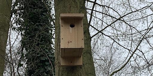 Under Construction - Build a Nestbox