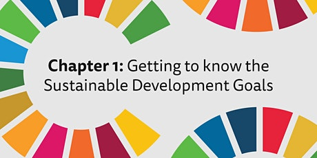 County Galway PPN and the SDGs tickets