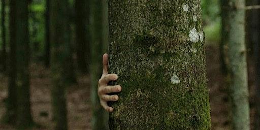 """Conférence de Ernst Zürcher : """"Les arbres, entre visible et invisible"""""""