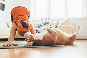 Yoga with dogs (adult class)
