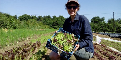 Introduction to Salad Growing. Tea/coffee on arrival & seasonal lunch. tickets