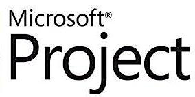 Microsoft Project Level 2