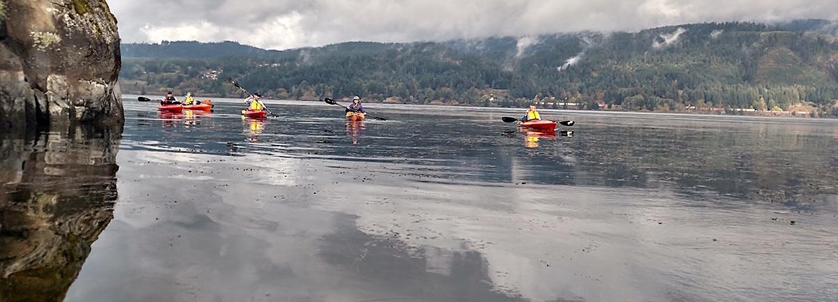 Dalton Point to Cape Horn Cliffs Kayak Tour