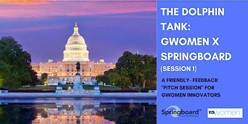 Dolphin Tank: Washington, DC | GWomen X Springboard (Session 1)