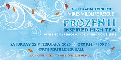 Frozen 2 Inspired High Tea Fundraiser for WIRES Wildlife Rescue