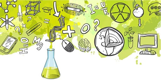 Equity, Diversity and Inclusion in STEM
