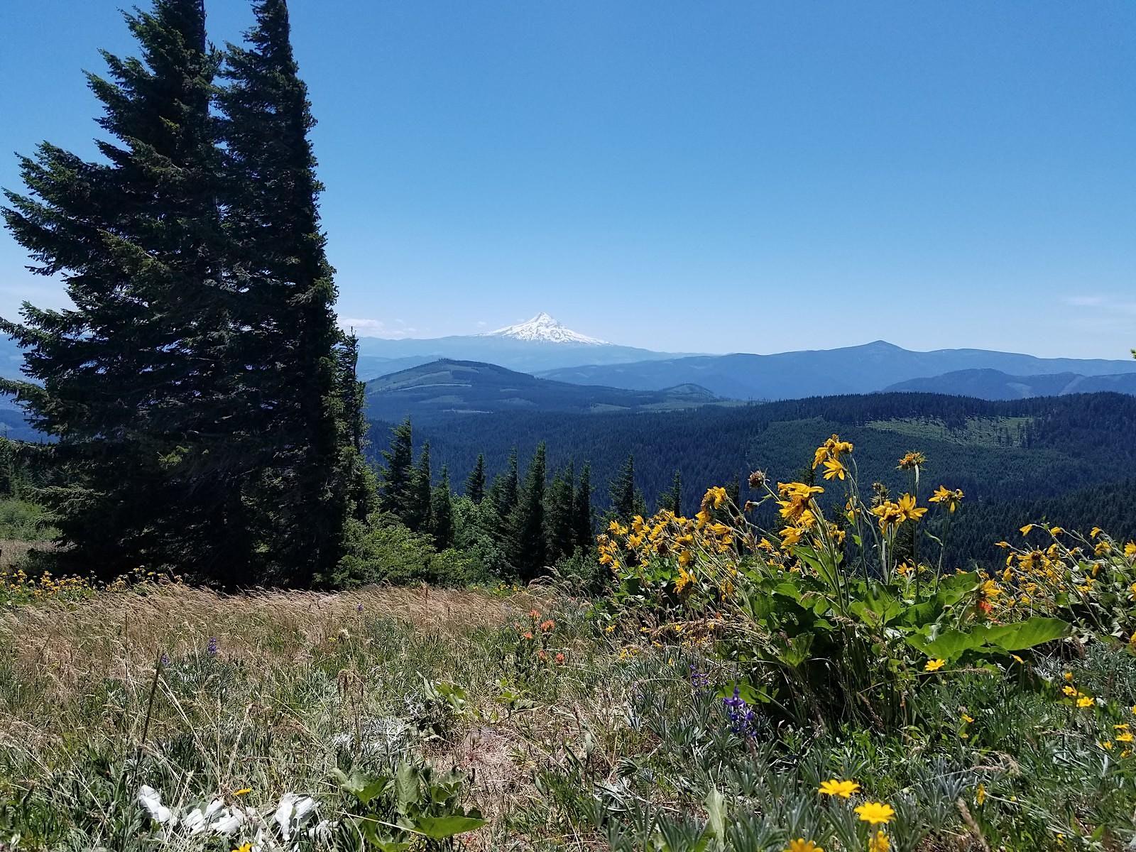 Whistling Ridge, WA