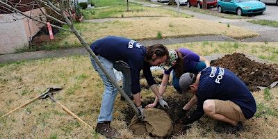 Citizen Forester Training 101 - California