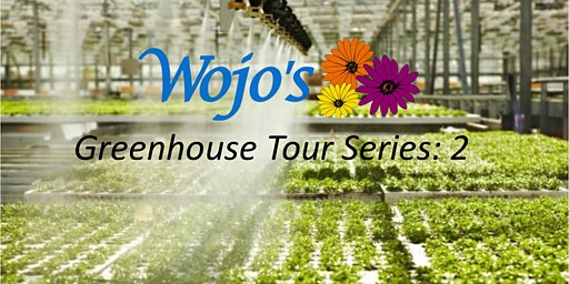 Greenhouse Tour Series: 2