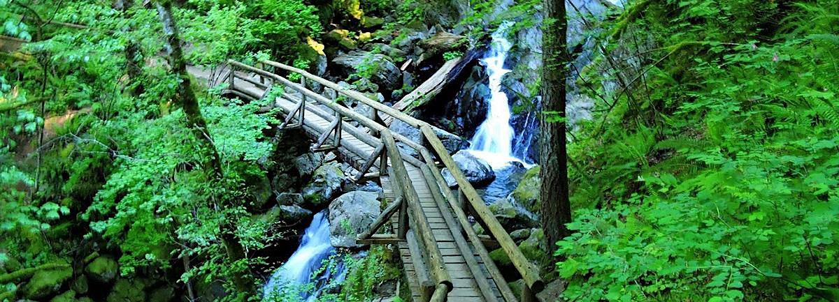 Little Beacon Rock & Rodney Falls Family-Friendly Hike, WA