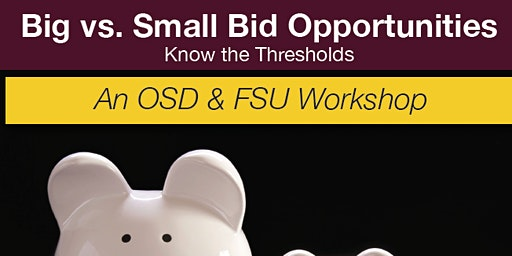 Wednesday Workshop Series - Big vs Small Bid Opportunities: Know the Thresholds