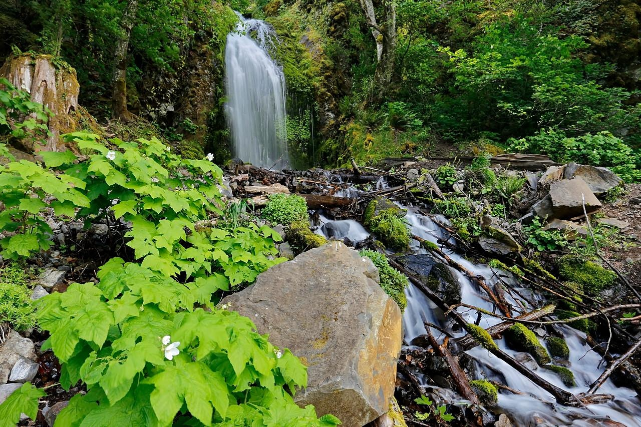 Trail of Waterfalls, OR