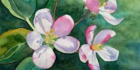 Watercolor Painting with Wendy Stewart tickets