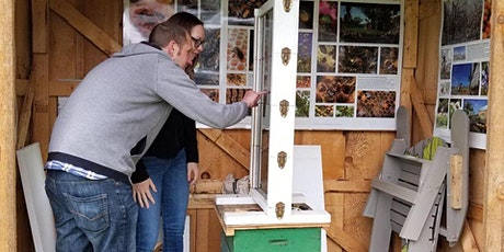 Bee Talk with Observation Hive tickets