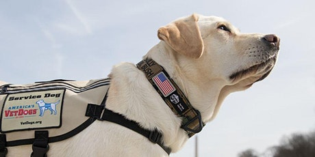 3rd Annual Salute to Soldiers Fundraiser to Benefit America's VetDogs tickets