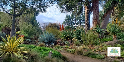 Ruth Bancroft Garden - General Admission (any single day)