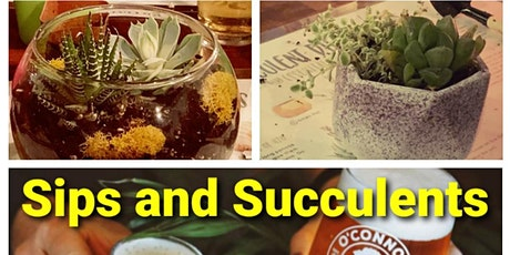 Sips and Succulents with Essential Oils tickets