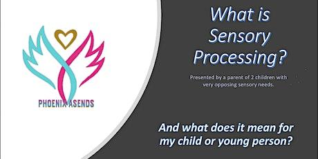 Sensory Processing Awareness Session tickets